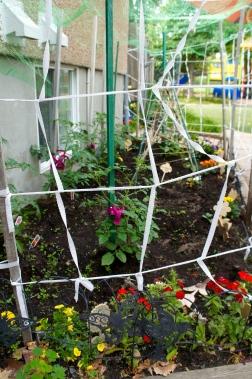 Notre jardin fait par les enfants du CPE